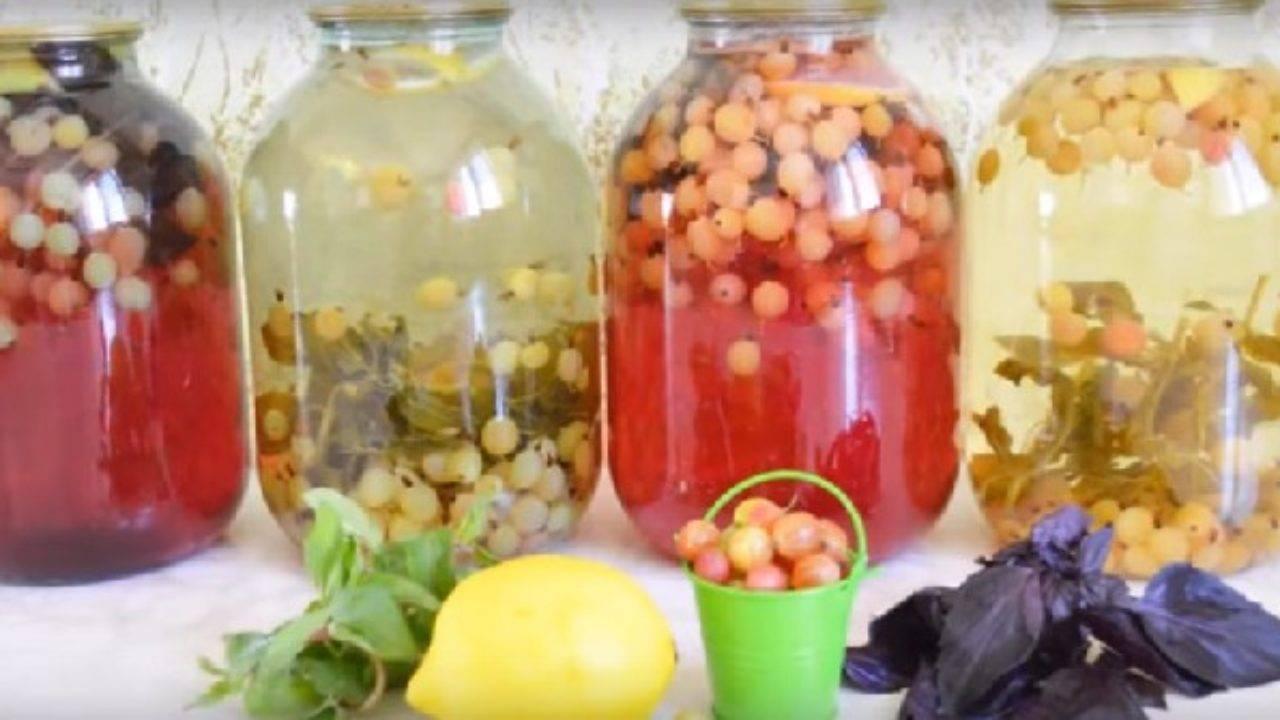 ТОП 9 рецептов приготовления компота Мохито из крыжовника на зиму