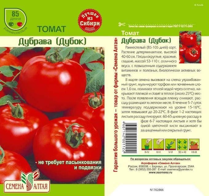 Сорт помидор дубрава: урожайность и особенности выращивания