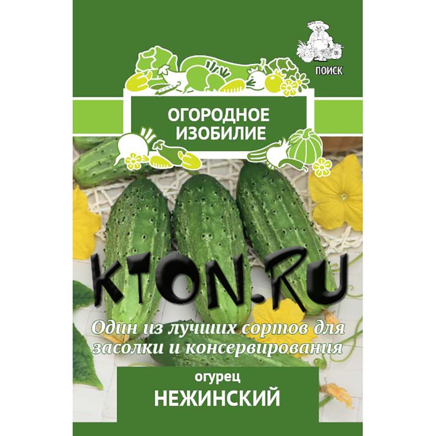 Сорт огурцов нежинский: описание и характеристика, отзывы