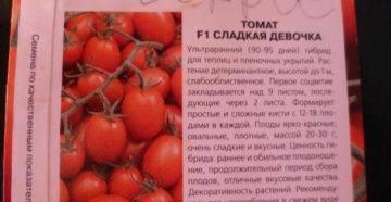 Красота на ваших грядках — томат «золотая королева»: описание сорта, фото