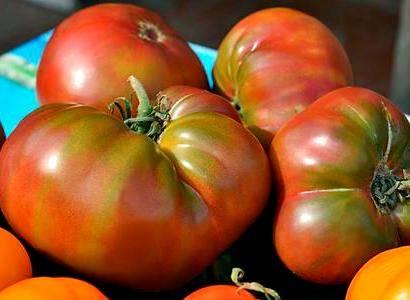 Лёжкий сорт для салатов и консервации — гибридный томат «мальва f1»