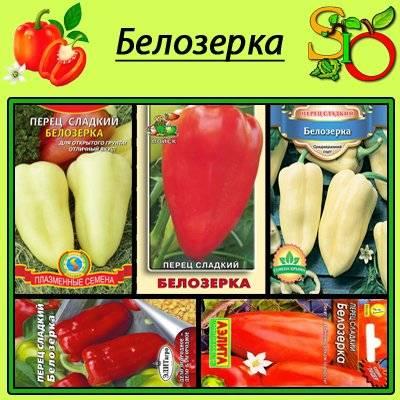 Характеристика и описание сорта болгарского перца белозерка