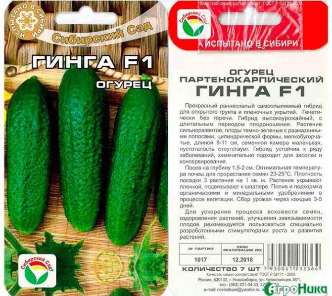 Огурец «гинга f1» очень урожайный и универсальный
