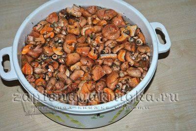 Приготовление грибов рыжиков в домашних условиях. как правильно засолить рыжики: горячая и холодная засолка
