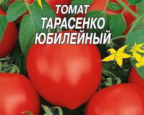 Описание и характеристики томатов сорта юбилейный тарасенко, урожайность