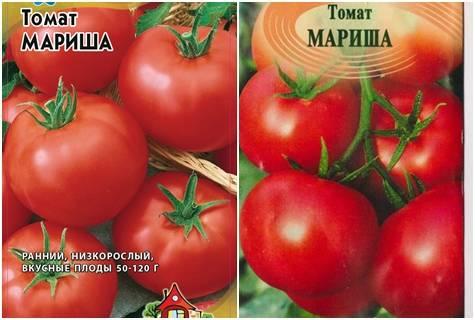 Характеристика и описание сорта томата Мариша, его урожайность