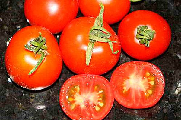 Томат родом из молдавии — описание и характеристики помидор сорта «факел»