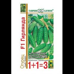 Интересный гибрид – огурец сибирская гирлянда f1. особенности посадки и выращивание