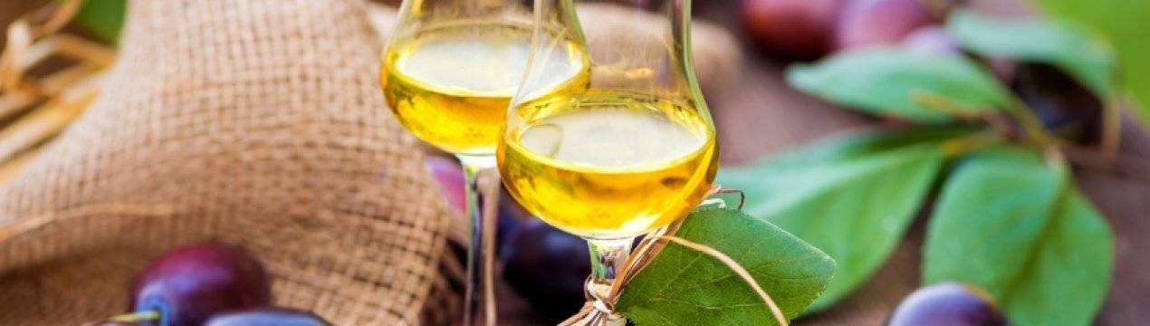 5 простых рецептов приготовления вина из йошты в домашних условиях