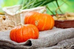 Особенности тыквы крошка: посадка и выращивание