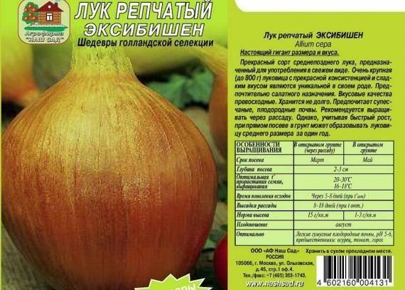 Лук сорта эксибишен: от рассады до получения урожая салатных гигантов