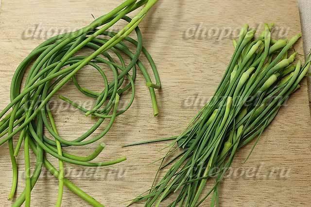 Источник витаминов и отличная приправа: заготавливаем на зиму измельчённые чесночные стрелки