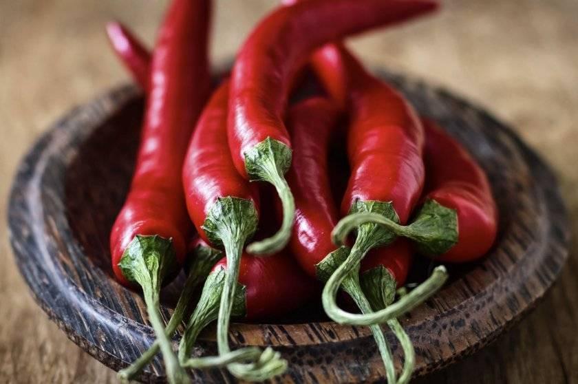 Рецепты горького перца, маринованного, соленого и квашенного на зиму