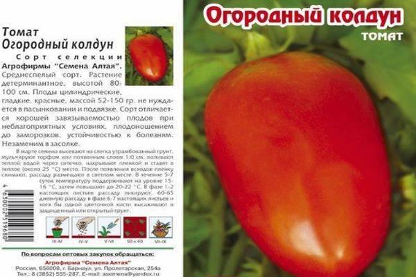 Собираем богатый урожай, соблюдая правила ухода — томат «ляна» и методика его выращивания