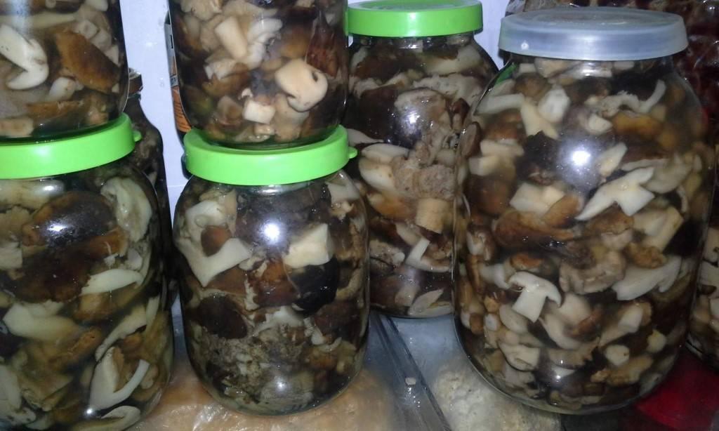 Маринованные красноголовики рецепты приготовления на зиму