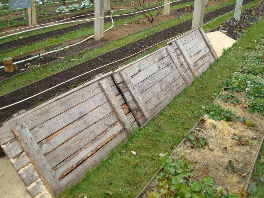 Когда и как укрывать виноград на зиму чем утеплить — способы и материалы