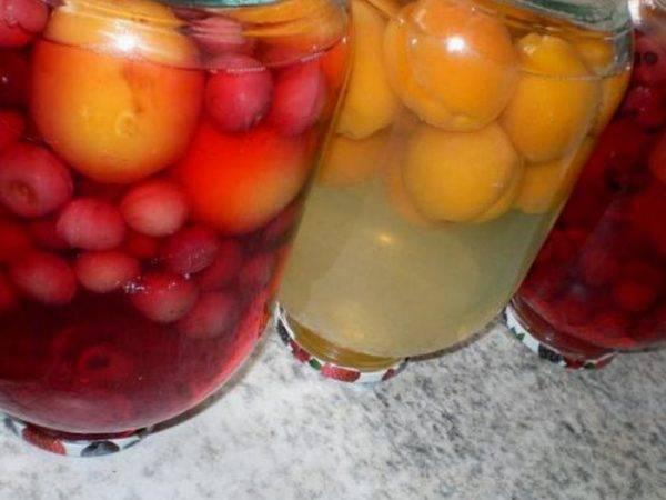 Оазис в пустыне виноделия: домашнее вино из сухофрукутов