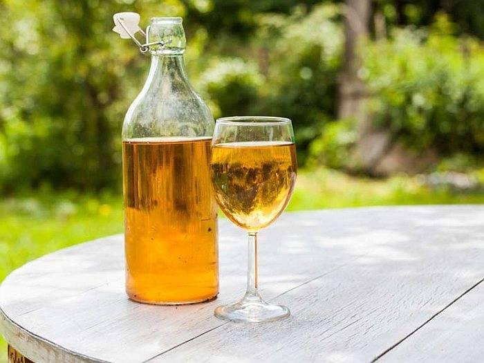 Чем полезно виноградное вино — изучаем свойства красного вина и пьём его правильно