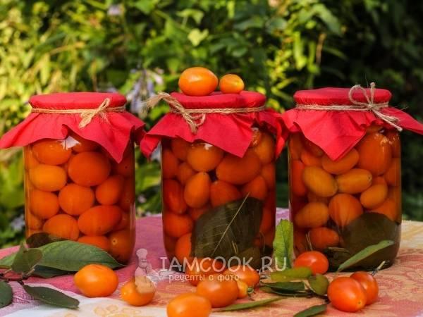 Рецепт консервирования помидор с малиновыми листьями на зиму в банках