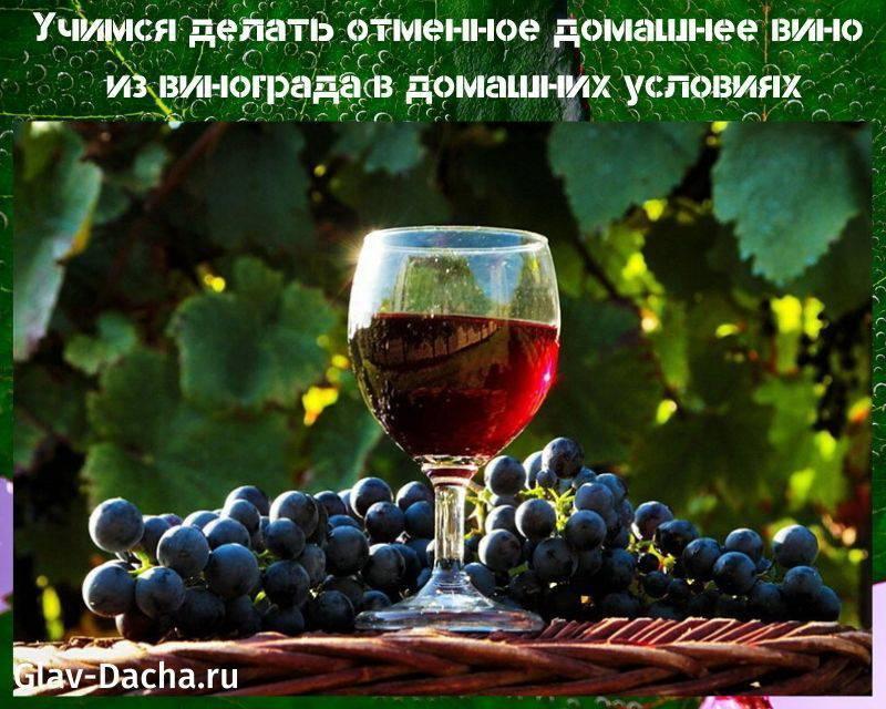 Домашнее вино из винограда молдова