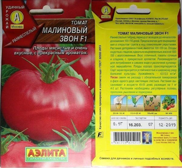 Неприхотливый помидор с чудесным сочным вкусом — сорт томата «малиновый слон»: фото, описание и нюансы выращивания