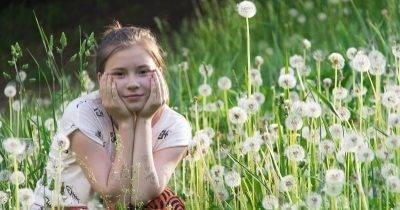 Как избавиться от вьюна в огороде навсегда