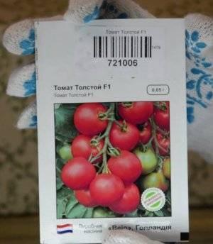 Томат бенито f1 — описание сорта с фото