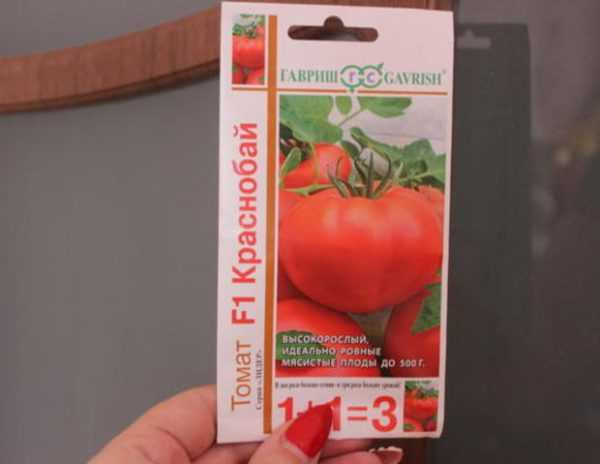 Популярный и любимый многими сорт кисло-сладких помидоров черри: томат «японская кисть» и его преимущества
