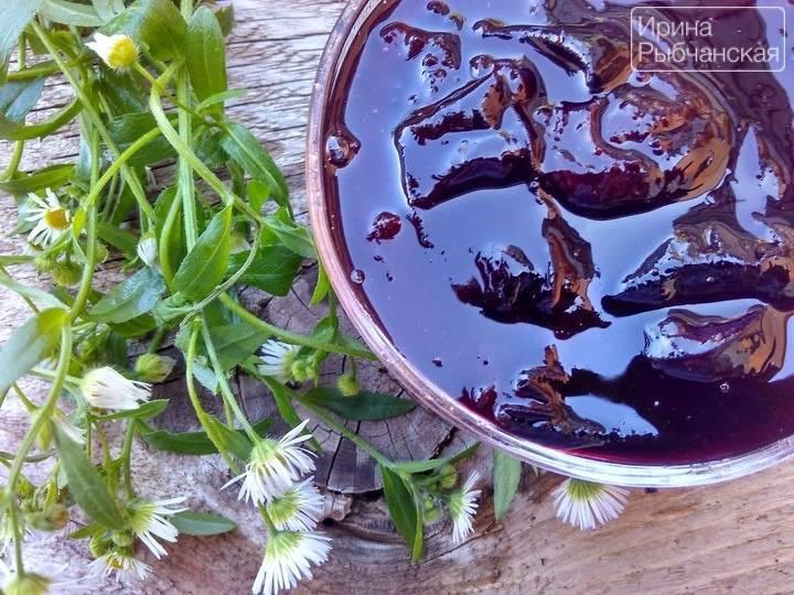 Простой рецепт приготовления желе из слив без косточек на зиму