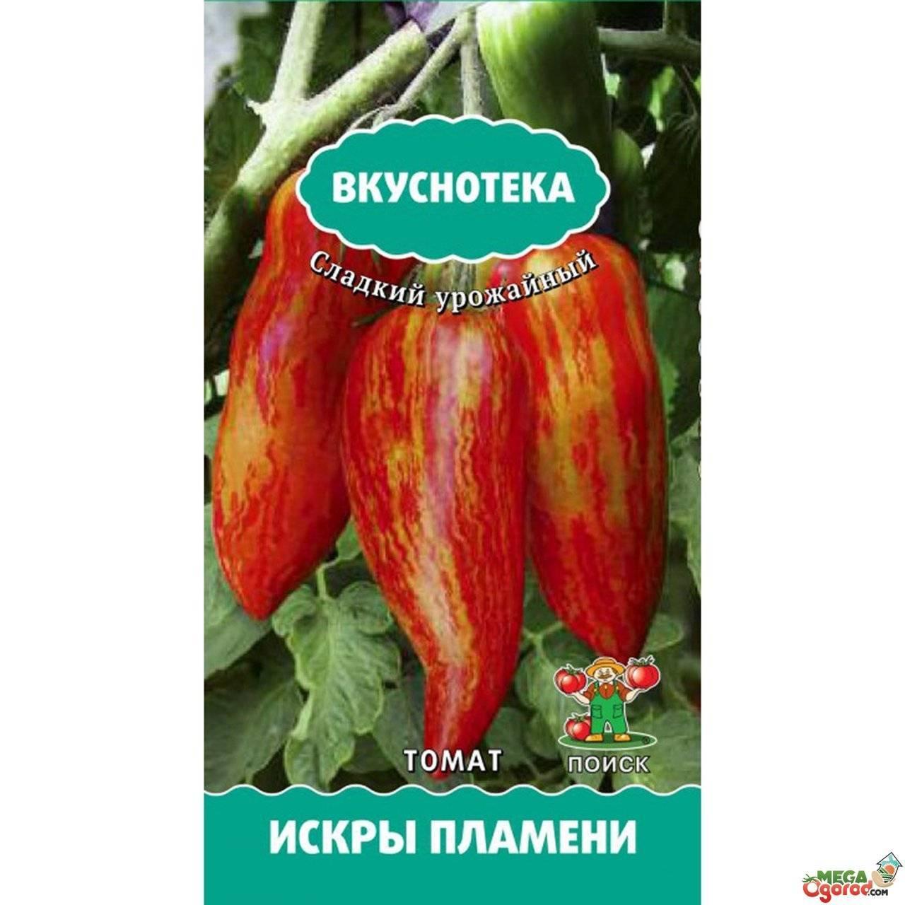 Огненный томат для теплиц – искры пламени. подробности агротехники и описание сорта