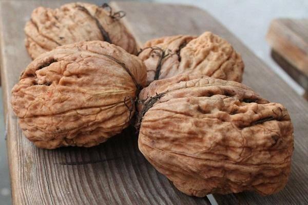 15 лучших сортов грецких орехов с описанием и фото