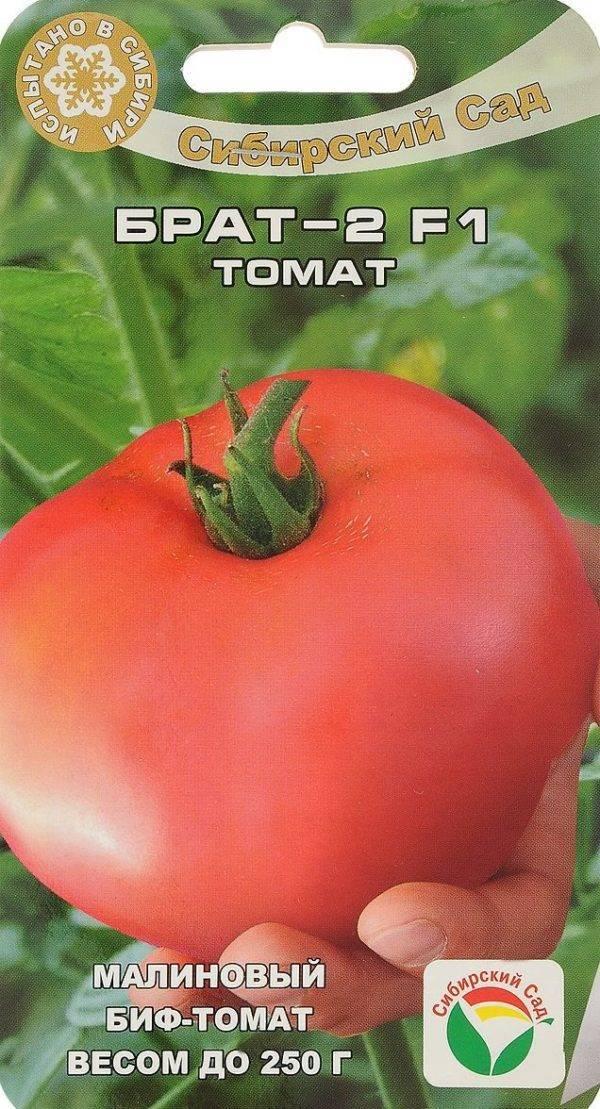 Насколько томат «вечный зов» устойчив к болезням и что может увеличить его урожайность
