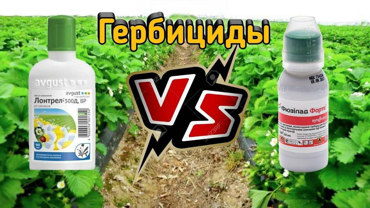 Гербицид для клубники от сорняков: чем обработать, описание препаратов