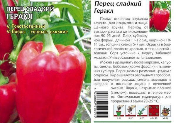Характеристика и описание лучших сортов и гибридов сладкого перца