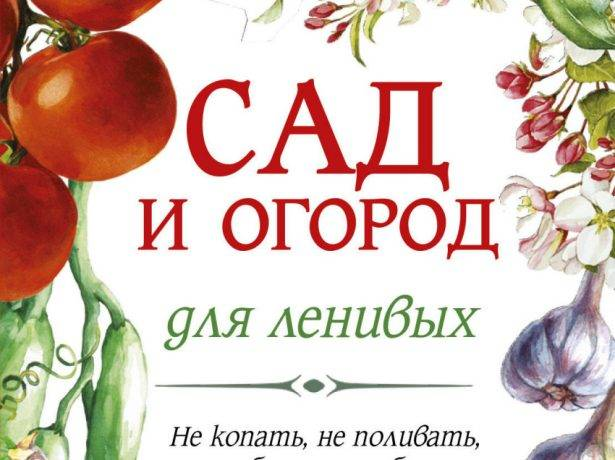 Томаты без полива: метод галины кизима