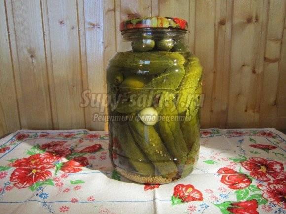 Как заготовить на зиму маринованные огурцы с горчичными зернами и куркумой и правила хранения