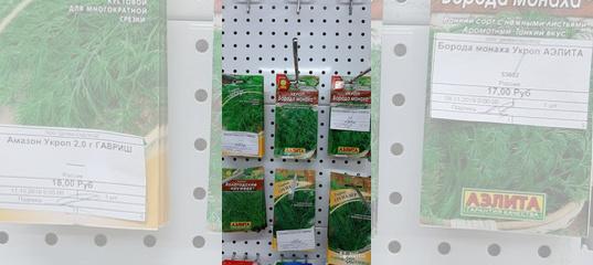 Укроп грибовский: отзывы, фото, урожайность, выращивание