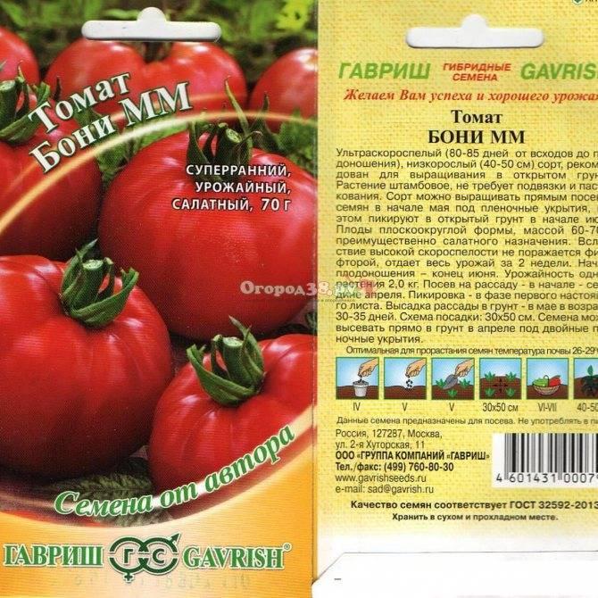 екатерины тоже томат ленинградский гигант отзывы фото работы моделью
