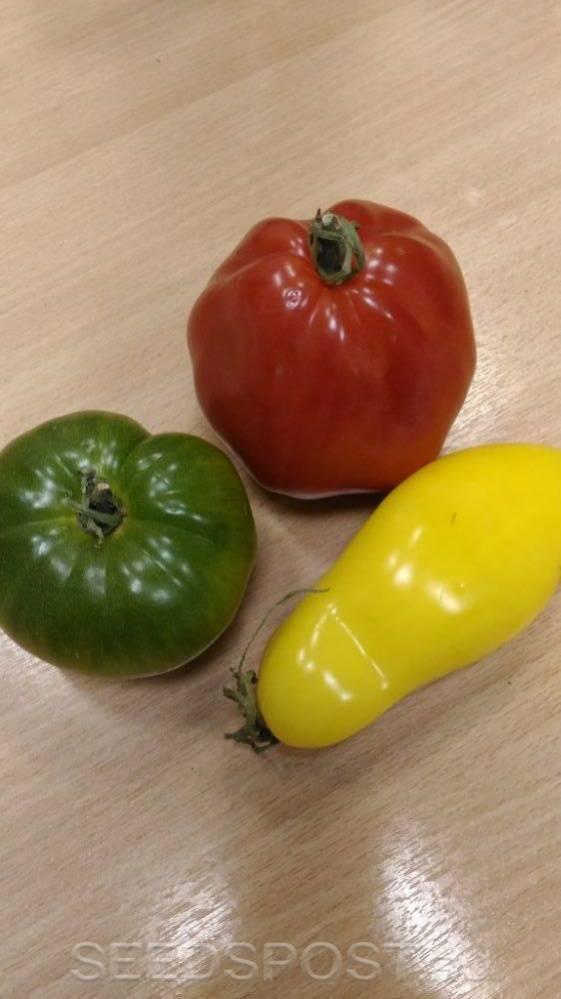 Ирландский ликер томат
