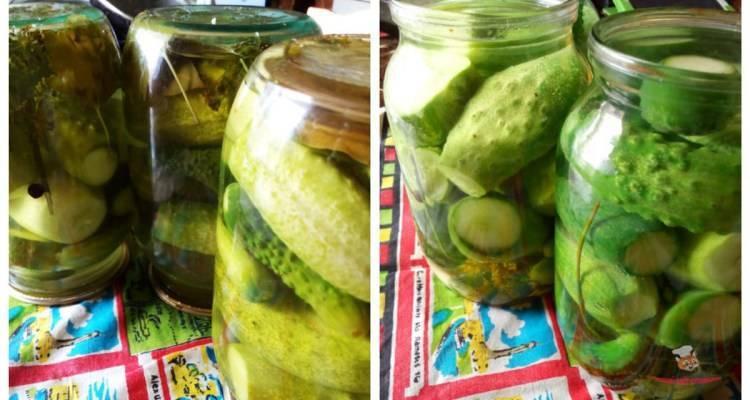 Лечо из огурцов на зиму — 10 невероятно вкусных рецептов заготовки с пошаговыми фото
