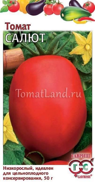 Описание сорта томата салют, особенности выращивания и ухода