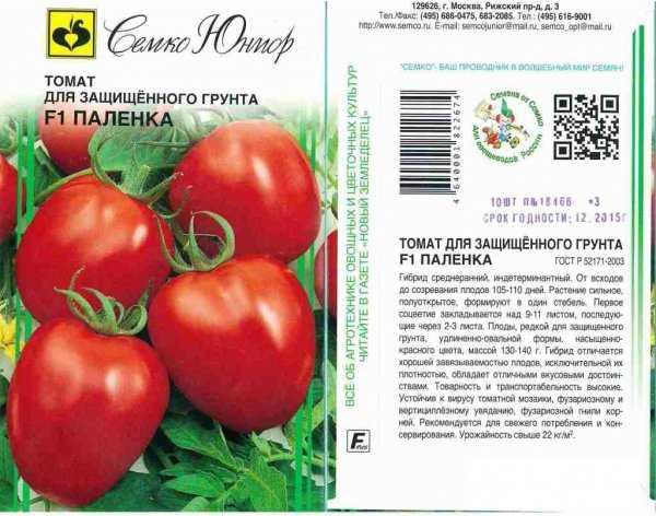 Описание лучших голландских сортов томатов для теплиц и открытого грунта