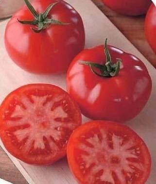 Главный помидор на вашем участке — томат генерал