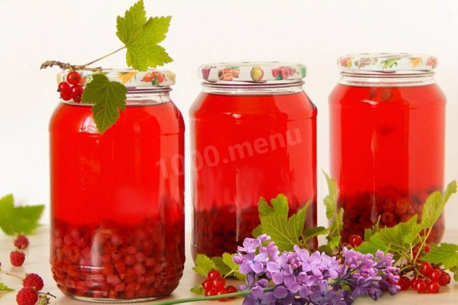 Компот из красной смородины на зиму — 6 простых рецептов на 3-х литровую банку