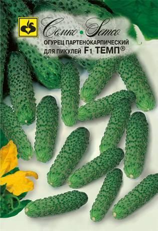 """Огурец """"темп f1"""": основные характеристики, преимущества и недостатки, отзывы огородников"""
