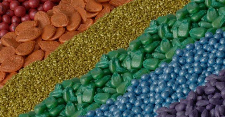 Как замочить семена огурцов перед посадкой – 4 этапа подготовки и 4 совета по замачиванию
