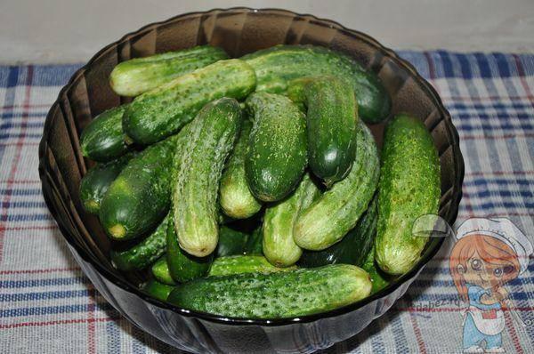Топ 12 вкусных пошаговых рецептов маринования огурцов на зиму