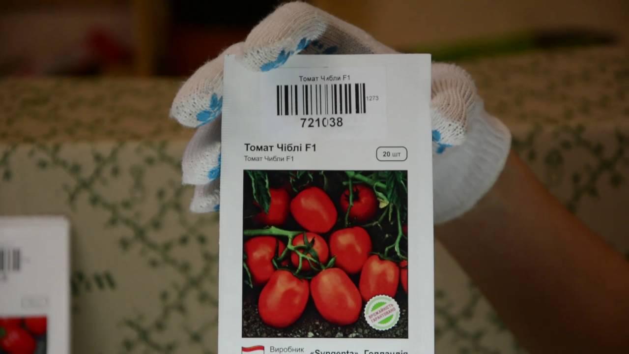 Описание гибридного сорта томата Чибли, его выращивание