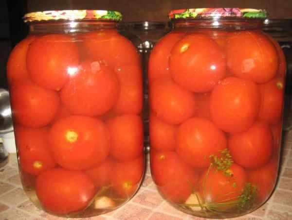 Почему лопаются помидоры на кусте и как этого избежать