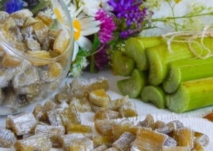 Лучшие пошаговые рецепты приготовления цукатов из ревеня